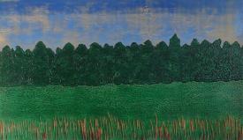 Cavan Landscape 1