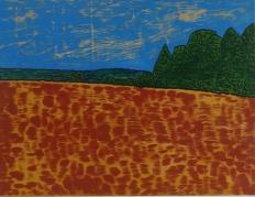 Cavan Landscape 3